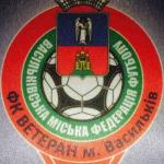 Ветеран (Васильков)