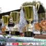 Чемпионат Киева по футболу среди ветеранов 50+. Впечатления участников